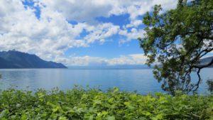 Croisiere Sportive Lac Leman